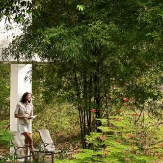 Woman reading terrace inspiration nature verdant